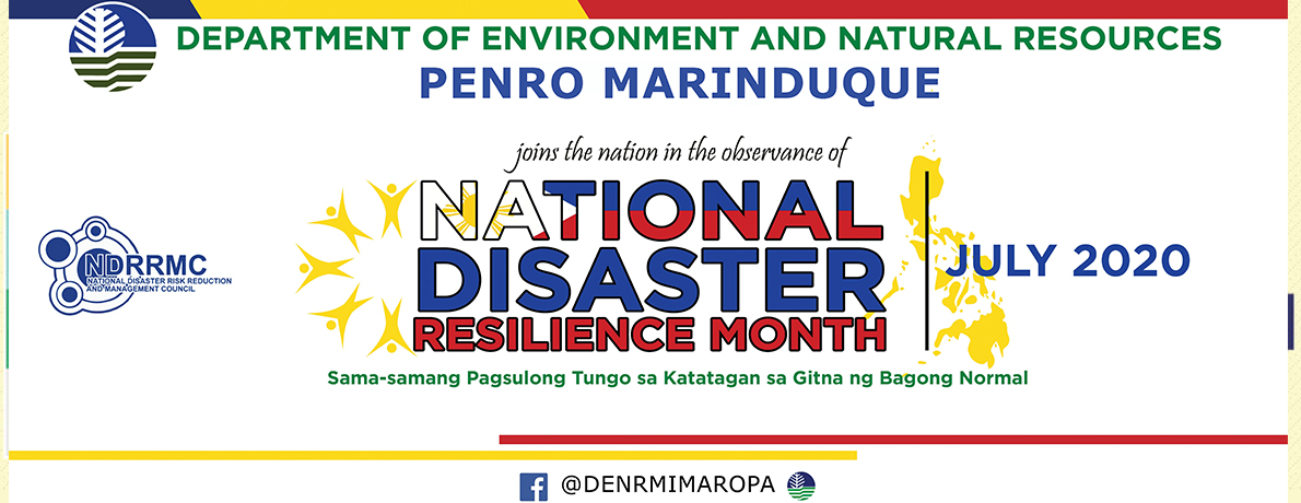 National Disaster Resilience Month 2020